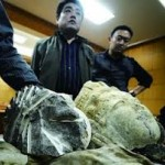 China recover Buddha heads from thieves