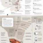 INFOGRAPHIC: Tomb raiders in China