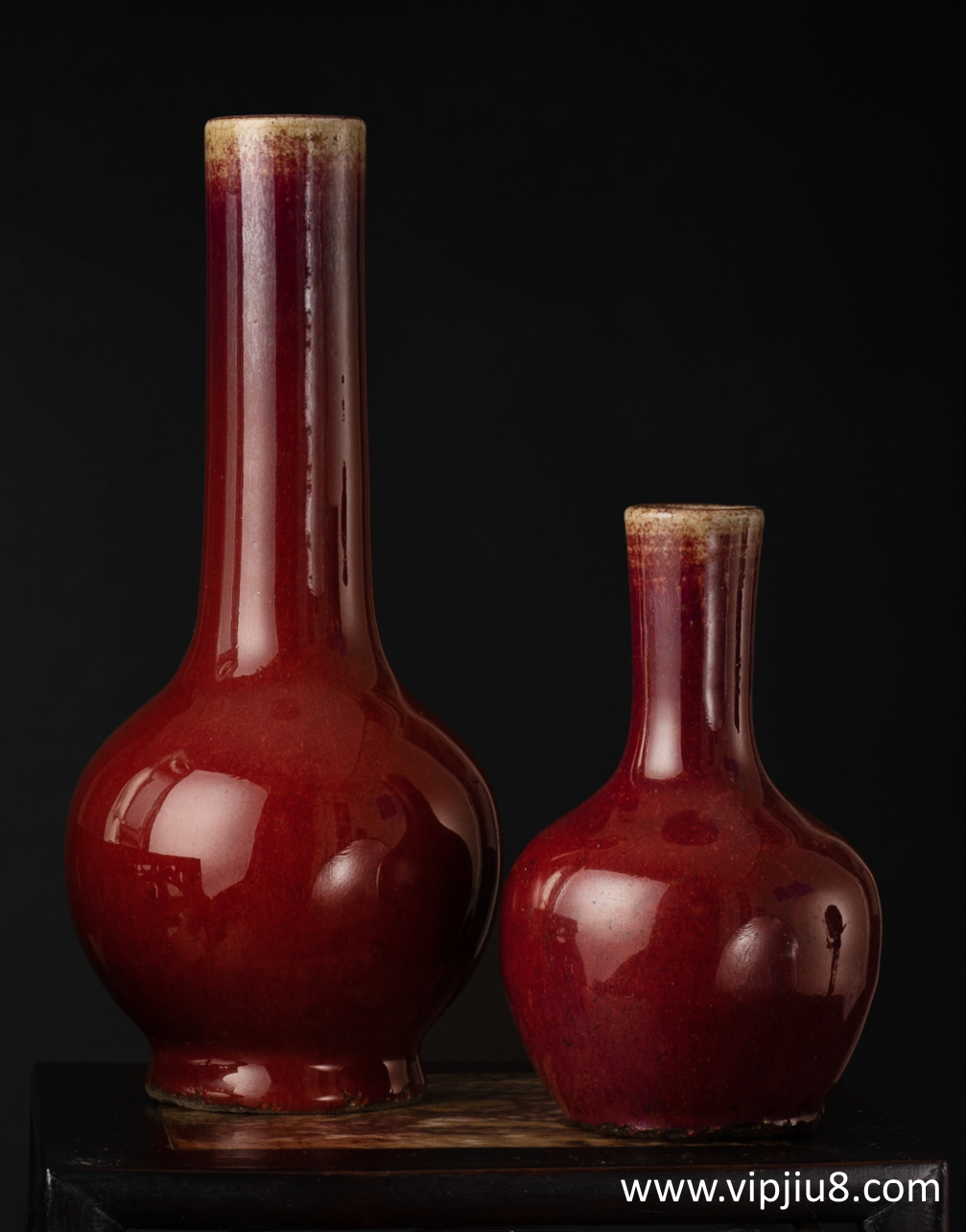 Two 18thc Sang-De-Boeuf Bottle Vases